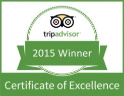 CertificateOfExcellence2015